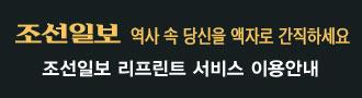조선일보 리프린트